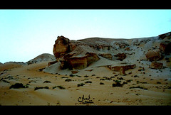 desert of al-Assa (revolution inlovers) Tags: desert hassa ahsa   alassa