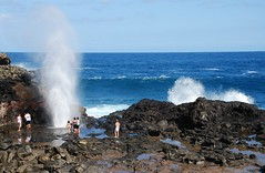 At the Blowhole