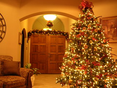 Welcome to Christmas at my house (PhotoGrandma) Tags: christmas wow texas postcard royal christmastree glowing smrgsbord texasaggies merrychristmasandahappynewyear cornersofmyhome lightcolor texasamcorpsofcadets