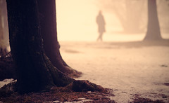 Lost In The Fog II (Philipp Klinger Photography) Tags: schnee trees winter light woman mist mountain snow tree ice silhouette fog forest germany deutschland cool nikon europa europe nebel hessen bokeh frankfurt hill series philipp taunus baum feldberg hesse klinger nikkor180mmf28 lostinthefog topofthefog aplusphoto d700 infinestyle dcdead artofimages bestcapturesaoi