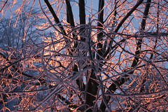 "Light through Ice • <a style=""font-size:0.8em;"" href=""http://www.flickr.com/photos/21814723@N02/3146172156/"" target=""_blank"">View on Flickr</a>"