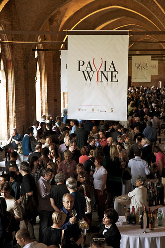Pavia Wine