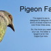 Fake Pigeon Science