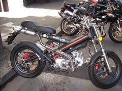 Ruben's new ride (bigiain) Tags: motorcycles bikes sachs madass