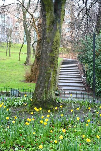 Kelvingrove Park 35