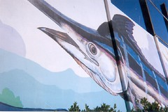 Mural marlin