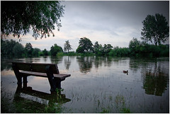 High Water (malc/c) Tags: england urban water thames canon river landscape 350d dawn countryside duck flood seat 1022