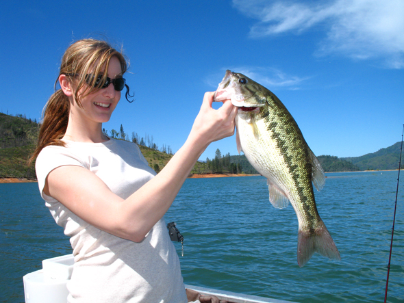 Lake Shasta bass.jpg