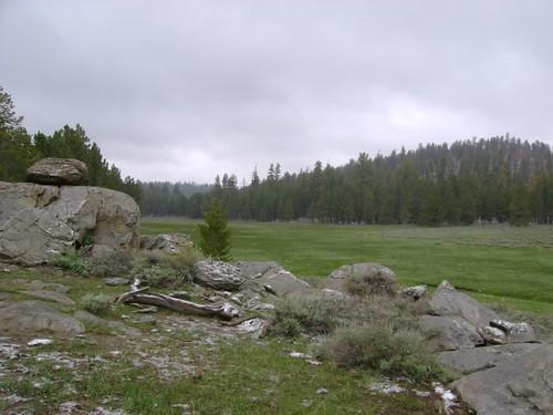 Hooker Meadow 6