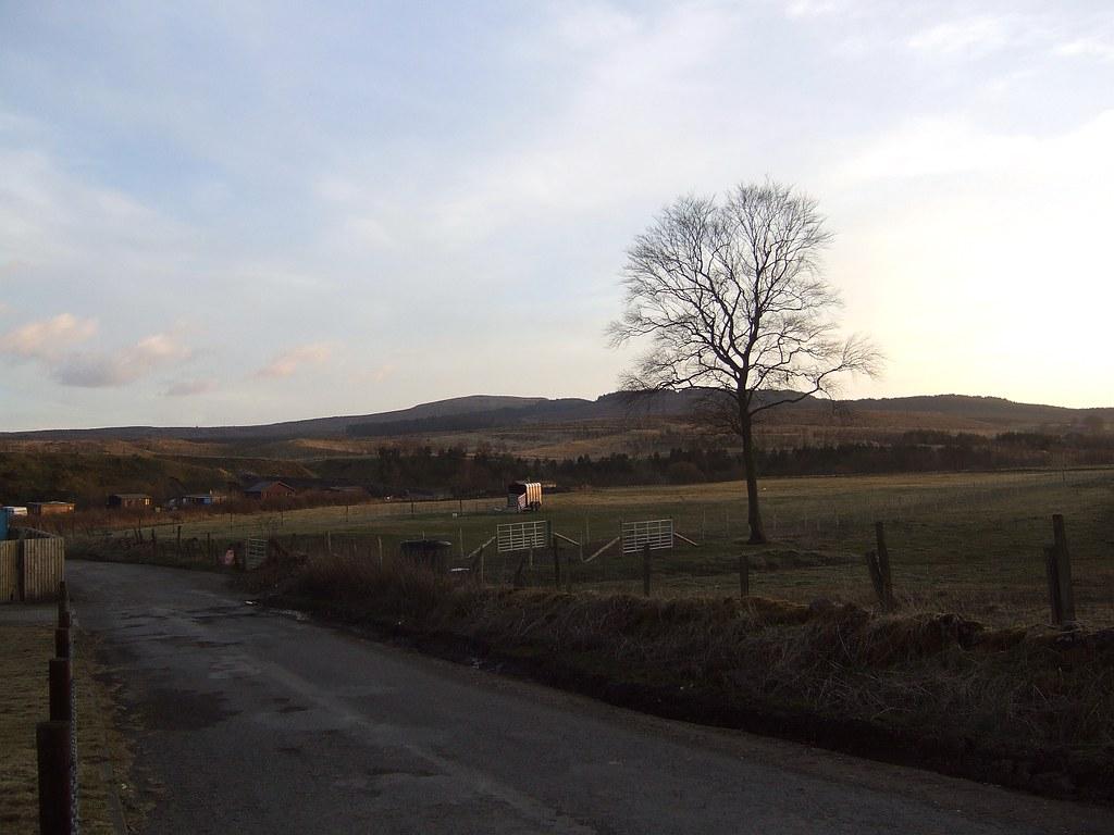 Carronbridge chalets at sunset