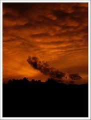 Good Evening (Midhun Manmadhan) Tags: sunset sky orange silhouette clouds kerala magichour canonpowershots3is