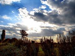 Atardecer en San Sebastin de la Cuarta (TRUZYNA PHOTOGRAPHY) Tags: chile blue sunset sky naturaleza sun sol nature colors beautiful sunshine animals azul clouds de landscape atardecer photography la scenery san plantas tramonto nuvole sebastian country himmel wolken paisaje cu colores cielo nubes vegetation nuvens campo animales rays blau puesta region bulutlar vii suns skyer mision 2007 vegetacin crepsculo rayos campestre crepuscolo fotografa moln clidos cuarta   mraky  oblaci   longav kaleidoscopio ret   bewlkter struzyna parajeschilenos