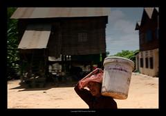 Rural Cambodia  389