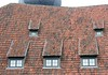 Old roof, old tiles (:Linda:) Tags: roof architecture germany tile bavaria town coburg five franconia dach fortress dachziegel gaupe dormer rooftile gaube vestecoburg dachgaupe dachgaube dachschindel