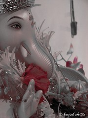 Ganpati Bappa.. Moryya....!! (Learning to Click..) Tags: blessings eyes god divine ganesh ganpati  siddhivinayak festivalsofindia  ganpatibappa      moryya