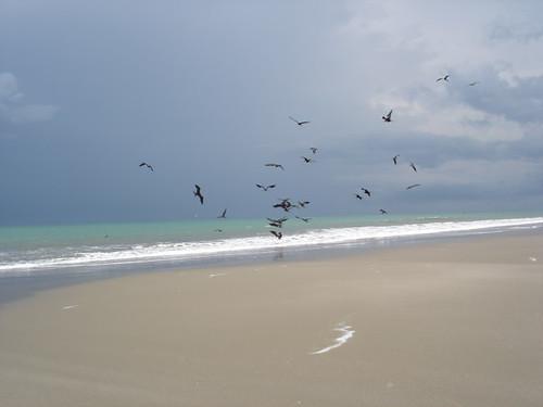 ecuador-beach-condo-beach-view