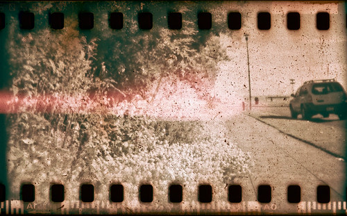 seattle park via holga