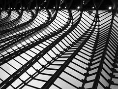 Museum of Science (Valencia) (Pawel Sawicki) Tags: bw texture valencia lines spain geometry linie architecure geometria museumofscience architektura hiszpania czarnobiałe walencja muzeumnauki wzrów pawełsawicki