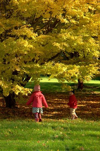JFK Arboretum