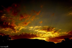 Awakening Time  (yusuf_alioglu) Tags: world shadow red sky cloud sun sunlight mountain black tree sunshine yellow clouds turkey photography photo flickr peace awakening time earth picasa panasonic 2008 goldlight tokat sunmorning gjgj yusufalioglu tokatcity awakeningtime
