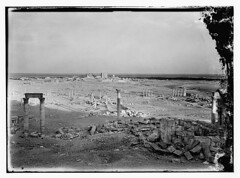 palmyra 1898-1946 (tummaleh) Tags: pictures old countries arab     ilamic
