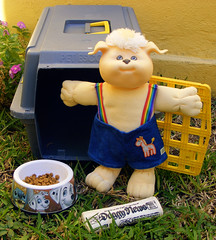CABBAGE PATCH KIDS KOOSA (THe cUriOUs OYsTEr) Tags: new dog pet news kids mexico christopher cabbage doggy 1983 patch 1985 colima coleco koosa fujifilmfinepixs5700 thecuriousoyster appalachianartworks