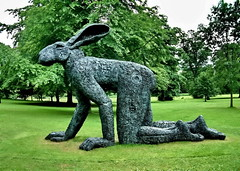 crawling hare (Harry Halibut) Tags: park trees sculpture west green grass bronze hare yorkshire sophie ryder crawling allrightsreserved barnsley bretton yorkshiresculpturepark colourbysoftwarelaziness ysp080613389 ©andrewpettigrew