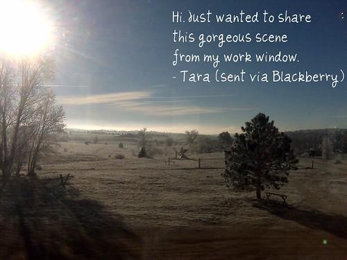 Colorado...