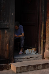 Companion (Nian 念) Tags: life china door summer people woman home cat chinese oldwoman 中国 chongqing 猫 家 重庆 老人 夏天 女人 瓷器口 中国人 门口 夏季 放松 ralax