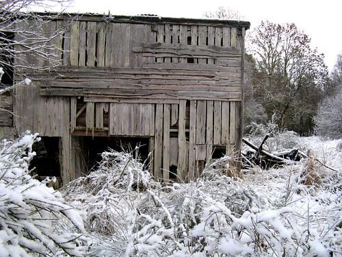 Teanacoil sawmill