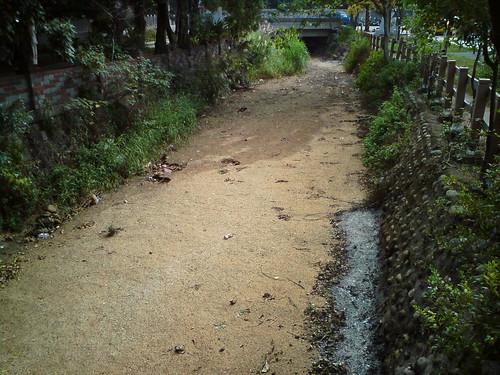 Taiwan Park #6