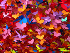 Paper Butterfiles (Daniel Y. Go) Tags: lumix colorful philippines butterflies panasonic peta lx3 lumixlx3 gettyimagesphilippinesq1
