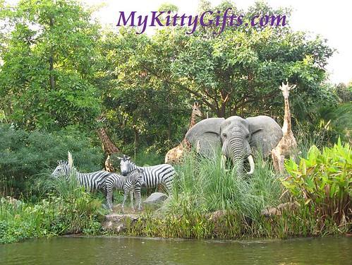 Hello Kitty Meeting Elephants, Giraffes and Zebras along Jungle River Cruise in Adventureland, Hong Kong Disneyland