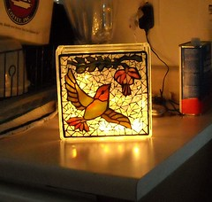 Hbird and Fuschia Lite Block..lighted