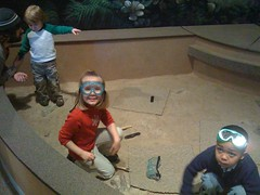 Budding paleontologists
