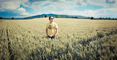 Mike and the grainfield (STEFFEN EGLY) Tags: summer portrait panorama field yellow canon germany deutschland 50mm stitch grain kornfeld 50mmf18 500d brenizer grainfield brenizermethod
