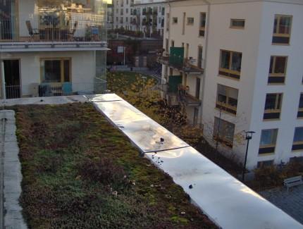Telhado verde