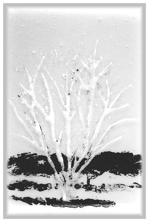 glass tree 'pen n ink'