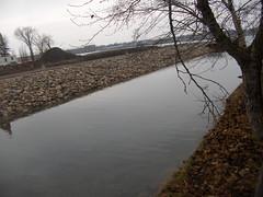 20070105-06 (Canadian Mark) Tags: boardwalk saultstemarie swampproject