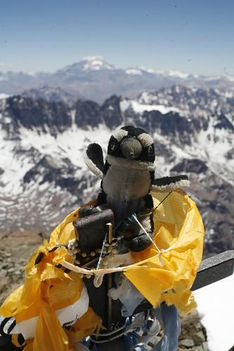 Yo en la cumbre del Cerro el Plata en Mendoza Argentina, casi 6000 mys de altura ...  y  no estoy ni cansado !!