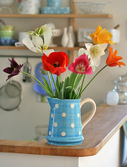 Tulips from my garden (Craft & Creativity) Tags: life flowers flower still tulips polka tulip bouquet stillife dots pitcher
