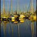 Sailing Boat Reflections Scarborough-2+