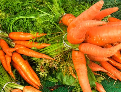 Ăn cà rốt có giúp tăng thị lực, làm mắt sáng hơn không?