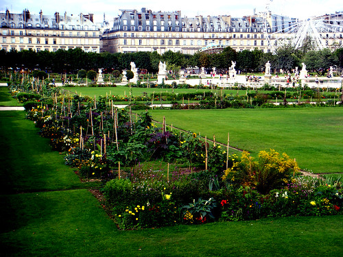 tuileries vegetable