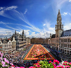 From the most exclusive and secret place. Carpet flower, Great Market, Brussels, Belgium (Batistini Gaston) Tags: brussels panorama belgium belgique belgie grandplace bruxelles panoramic brussel grotemarkt panoramique batistini tapisdefleurs gbatistini carpetflowers lesamisdupetitprince