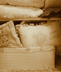 Peek-a-Boo Pillow (Sweetina) Tags: dog house color art home cat closet happy photography blog pretty babies fuzzy martha linen abby tint sheets bedding organizing linencloset shabbychic linenspray experimentingwithcamera sweetina sundaylaundry