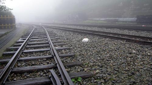 16.雲霧繚繞的阿里山鐵路