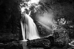 ~~ Sassenage waterfalls # 6 ~~ (Julien Ratel ( Jll Jnsson )) Tags: longexposure light bw white black nature water forest grenoble canon waterfall rocks eau exposure noir glow searchthebest natural lumire pierre falls nb tokina waterfalls hugs cascade eos350d blanc fort rochers chutes sassenage fil electriclightorchestra emptyplace docholiday bisous 50faves chutesdeau 1224f4 mywinners abigfave aplusphoto theunforgettablepictures overtheexcellence magicalglow theperfectphotographer goldstaraward blueju38 julienratel damniwishidtakenthat julienratelphotography goldenvisions boutdeplantelueur allwaysawayjulien theinventorofholidays