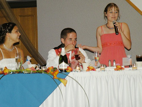 funny maid of honor speeches. great maid of honor speech