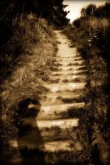 The stairway to heaven... (Kartik J) Tags: trip light shadow vacation usa stairs us heaven stairway heavenly stairwaytoheaven luffenholtzbeach a300 sonydslr abigfave sonyalphadslr myownshadow sal18250 sonya300 sonydslra300 sonyalphadslra300